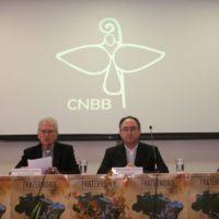 """Card. Sergio da Rocha: """"Admirar os biomas é contemplar a obra do criador"""""""