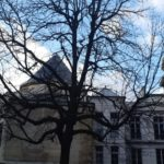 DIÁRIO DE UM MINEIRO (DE MANHUAÇU-E-DA-ROÇA) EM PARIS Ato 03: 08 janvier.