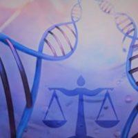 CNBB nomeia novos membros para a Comissão Especial de Bioética